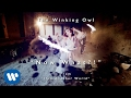 The Winking Owl - Now What?!- Official Video