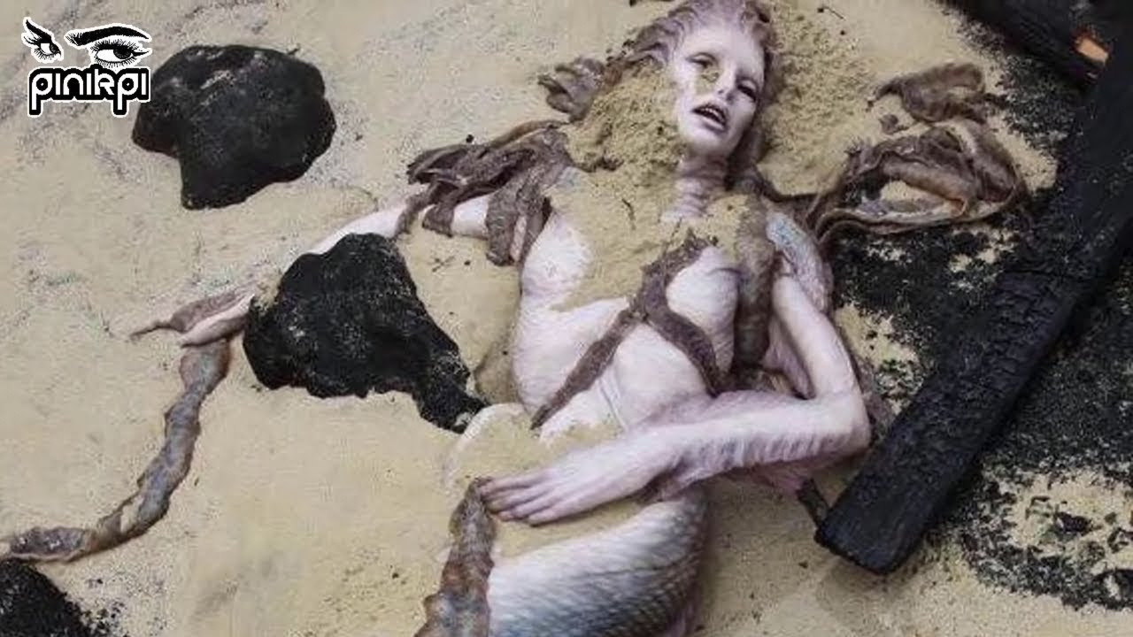 এবার সত্যিকারের মৎসকন্যা ধরা পরলো ক্যামেরায়‼ Real Life Mermaids Caught On Camera‼ in Bangla✅