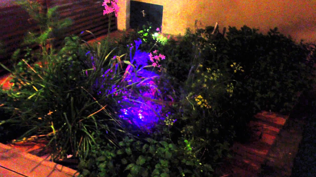 Iluminacion jardin con reflector led youtube for Iluminacion led para jardines