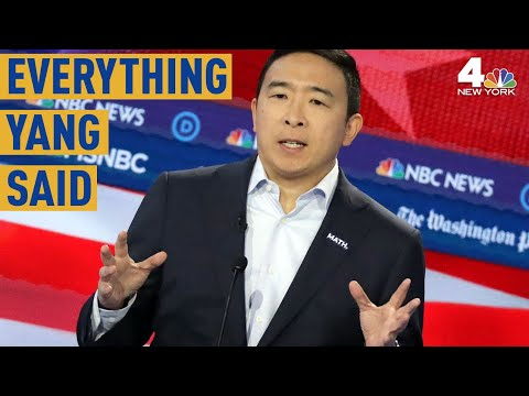 Everything Andrew Yang