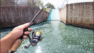 SPILLWAY FISHING IN CRYSTAL MICRO CREEK! -- * GIANT FISH SLIDE *