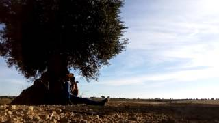 Free in an Olive Trees Sea. 'Folsom Prison Blues' - Johnny Cash (ukulele cover)