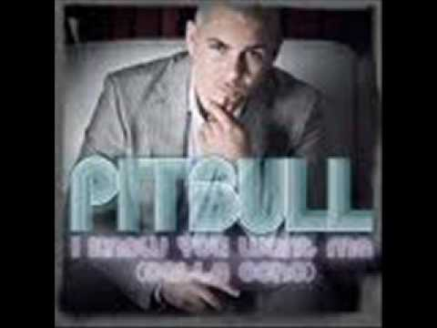Pitbull Vs We Don´t Speak Americano