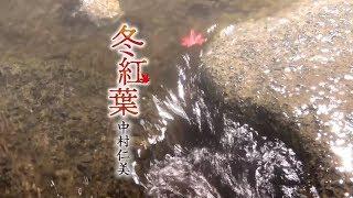 中村仁美 - 冬紅葉