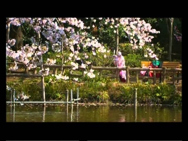 Cherry Blossoms (Hanami) - Nederlandse Trailer