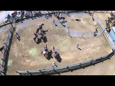 Starzman Ranch - Livestock Branding Part 1