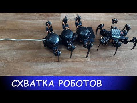 Схватка роботов: паук против муравья
