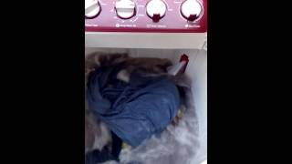 whirlpool superb Washing machine