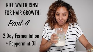 Rice Water Rinse For Hair Growth PART 4! + Peppermint Oil | BiancaReneeToday