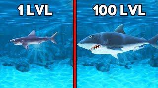 У МЕНЯ САМАЯ БОЛЬШАЯ АКУЛА! - Игры Для Детей   Эволюция Голодной Акулы #1
