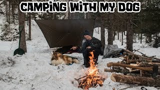 Camping With My Dog in the Snow