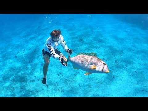 Under Water Catch And Release Fishing