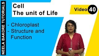 Cell - The unit of Life - Chloroplast - Structure and Function