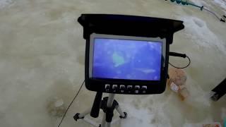Ловля рыбы с помощью подводной камеры