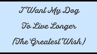 I Want My Dog To Live Longer The Greatest