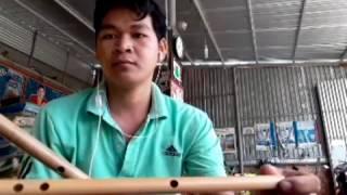 Gà trống nuôi con sáo trúc Đại Lộc