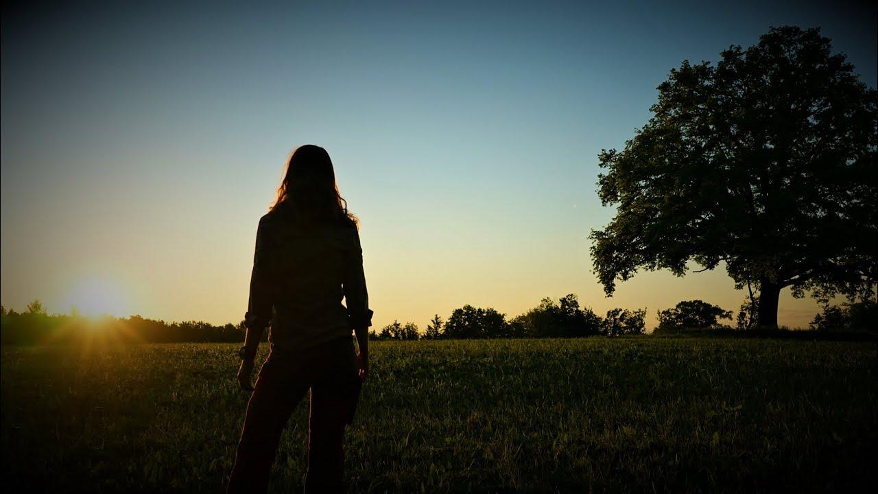 ASMR - Intensive Insights - 1 hour of pure nature - nature documentation - 4K - Vanessa Blank