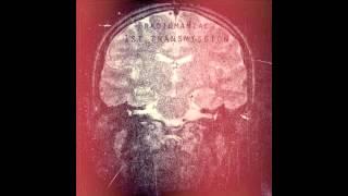 Radiomaniac - PS: Hallelujah