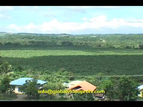DAVAO, MINDANAO, PHILIPPINES, The land of plenty