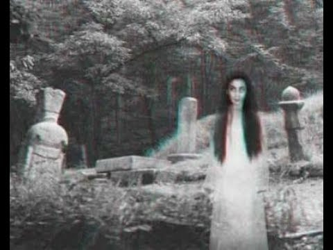 DOCUMENTAIRE PARANORMAL : MALEDICTION, FANTOME LES HISTOIRES