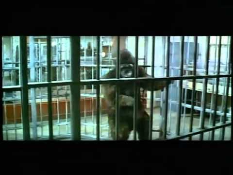 A Fuga do Planeta dos Macacos (Escape from the Planet of the Apes) Trailer 1971.flv