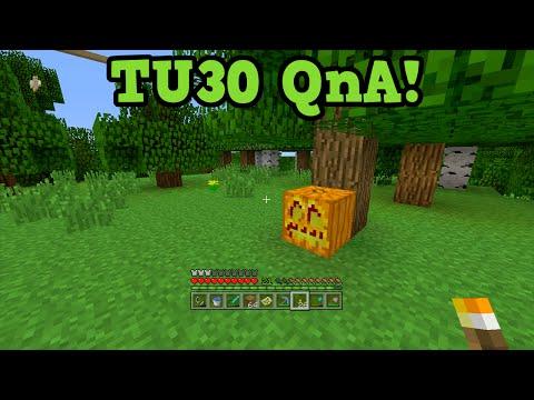 Minecraft Xbox 360 / PS3 TU30 QnA -  Mods & Cross Play