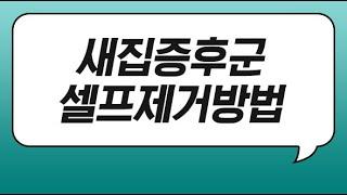 새집증후군셀프제거 입주청소업체 비용 적절한 업체 선정