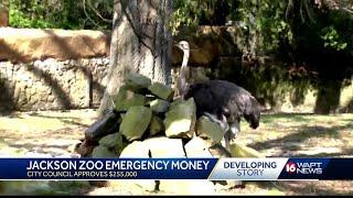 Changes underway at Jackson zoo