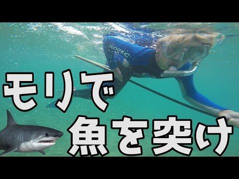 サメが出る海でモリ突きに挑戦 サンセットビーチ【スピアフィッシング】
