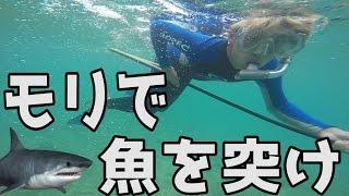 サメが出る海でモリ突きに挑戦 サンセットビーチ【スピアフィッシング】 thumbnail