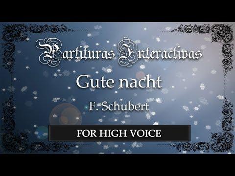 Gute Nacht - F. Schubert (Karaoke - Original Key: D minor)