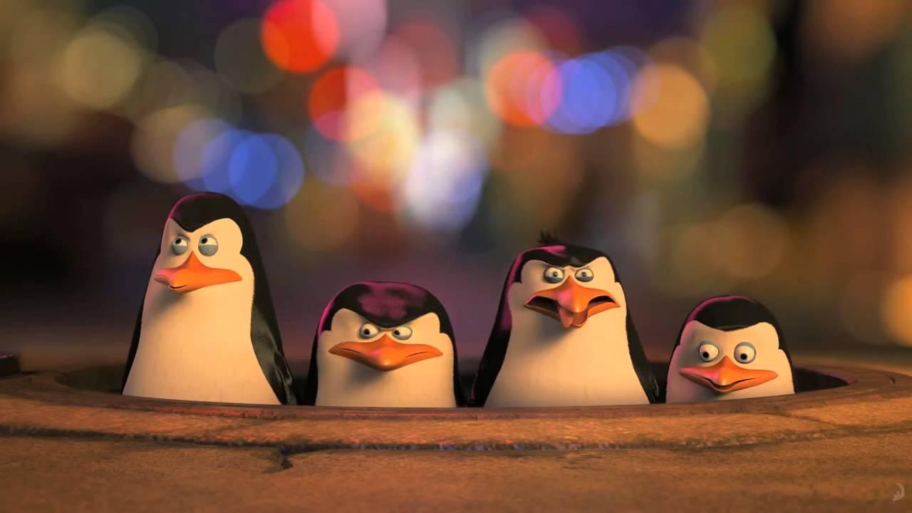 Пингвины мадагаскара приколы картинки, спишь открытка
