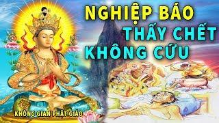 Chuyện Xưa Tích Cũ Đau Lòng - Thấy Chết Không Cứu Phải Đầu Thai Làm Súc Vật, Quả Báo Trong Nhiều Đời