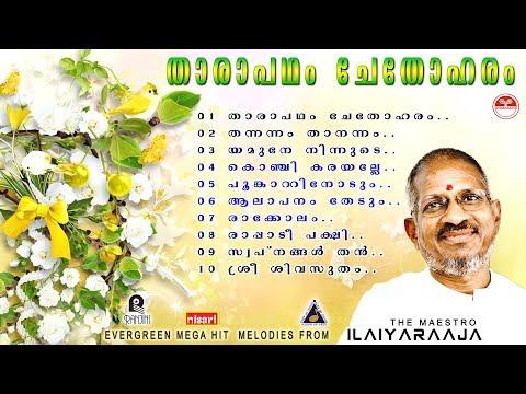 Tharapadham Chethoharam |Ilaiyaraaja,Dasettan,Janaki,Chitra Evergreen super hit songs