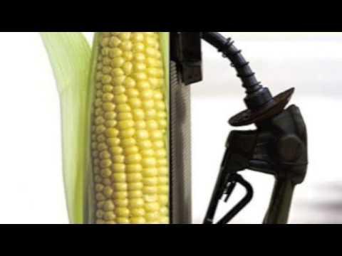 Ethanol Biofuel