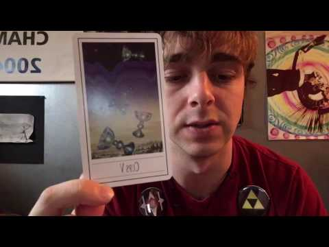 Daily 906 Tarot Card Reading - Cups V