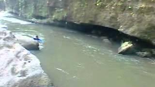 berburu ikan sidat di sungai besar