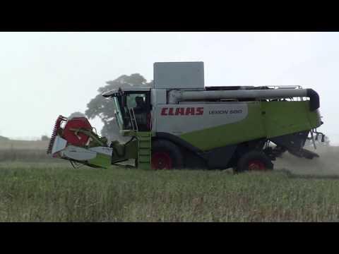 .Rzepak 2017 Gr Sobas Claas Lexion 580.
