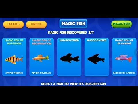 Fish tycoon 2 dapat magical fish 2 dan 5 youtube for Fish tycoon 2 breeding chart