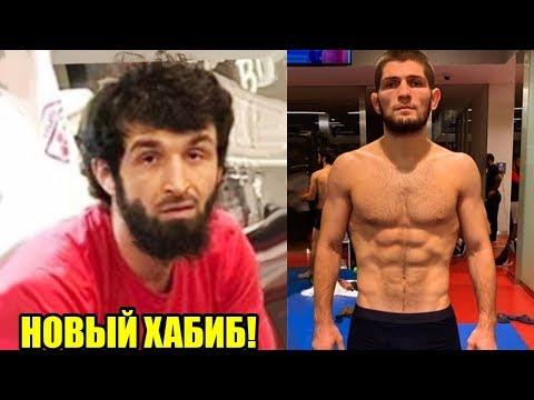 Этот боец новый Хабиб Нурмагомедов / Забит Магомедшарипов на пути к титулу UFC