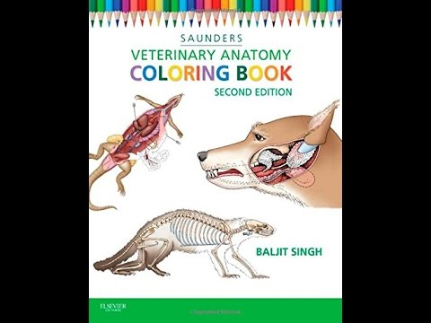 download veterinary anatomy coloring book 2e pdf - Saunders Veterinary Anatomy Coloring Book