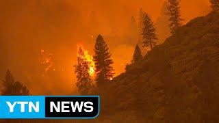 [취재N팩트] 美 산불 재앙 중에 또 불 질러...