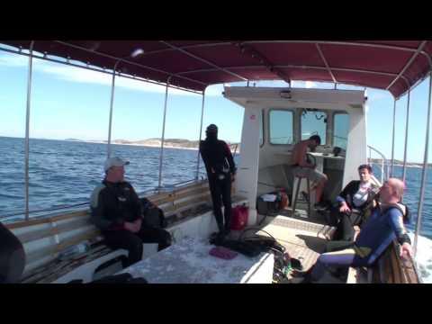 Diving-Kroatien-August 2013 ! Zirje(Secret Island Adventures)