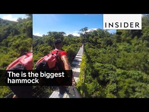 The biggest hammock ever dangles above a rainforest
