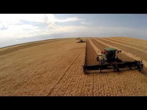 Serfas Farms 2014 Crop Season