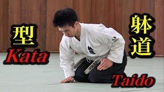 これが躰道か!【2】美しき型の秘密 This is Kata of Taido!