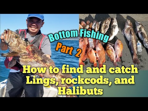 How To Find And Fish For Ling Cods, Rock Cods And Halibuts In The Ocean.  Bottom Fishing: Part 2