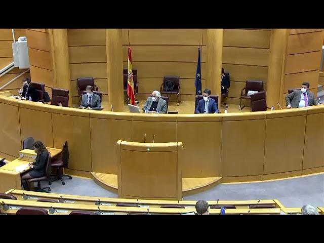Intervenciones del Senador de la isla de La Palma, Borja Sicilia en el Senado.