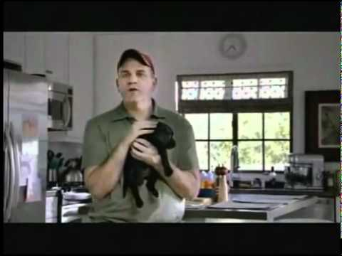 2008 Time Warner Cable Direct TV Hates Puppies.flv