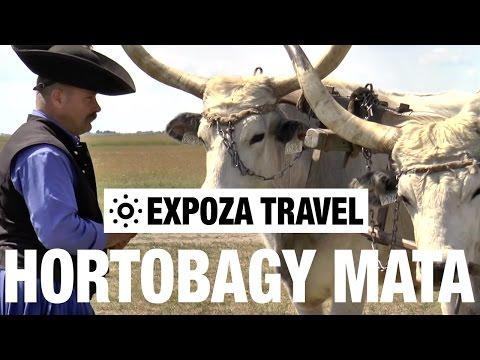 Hortobagy mata (Hungary) Vacation Travel Video Guide